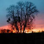 Des couchers de soleil inoubliables, gite de la Rouquette, location vacances Auvergne