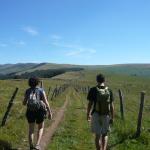 Chemin pédestre : la voie romaine en direction du Plomb du cantal