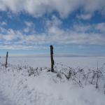 En revenant de Calvinet, sur la plaine d'Ayrolles à 1,5 km du gite de la Rouquette, location vacances auvergne