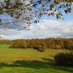 """Novembre 2014, promenade autour du gîte de la Rouquette, location vacances Auvergne, sur le pr """"les châtaigniers"""""""