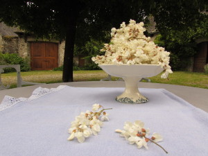 Compotier de fleurs d'accacia fraichement cueillies