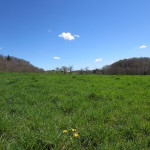 Randonnée autour de Calvinet gite de La Rouquette vue sur les près