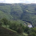 Bruyères et Fougères au dessus de la Vallé du Lot