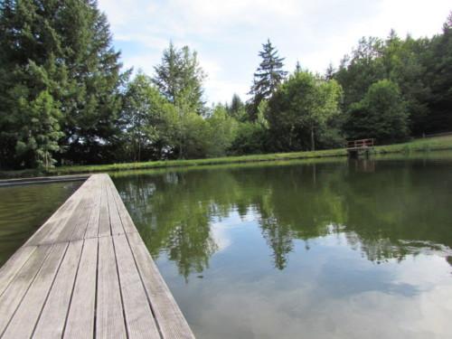 Piscine de calvinet entre piscine et étang rêverie