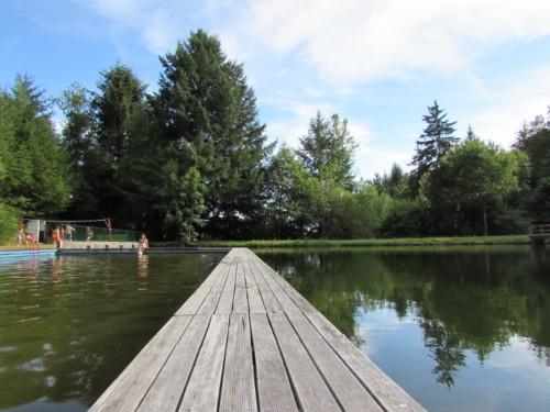 Piscine de calvinet  entre piscine et étang