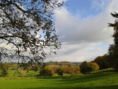 Sur le chemin de Cailhac à la Rouquette en automne