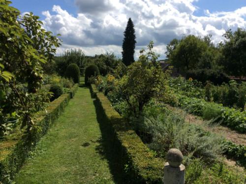 Allée de buis du jardin